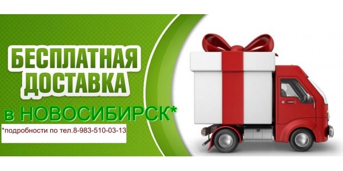 Перевозка в Новосибирск